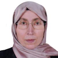 Hülya Küçük, Prof. Dr.